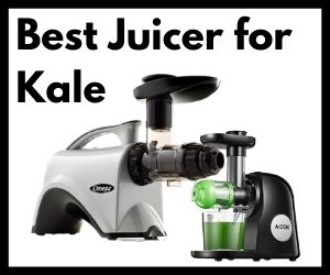 Best Juicer for Kale